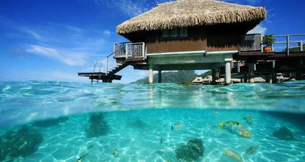 Overwater Bungalows Hilton Moorea