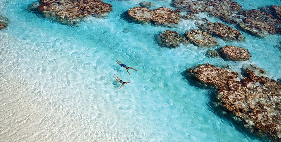 Swimming, Snorkeling and Scuba Diving are just some of the activities to enjoy on your Tahiti Vacation to The Brando