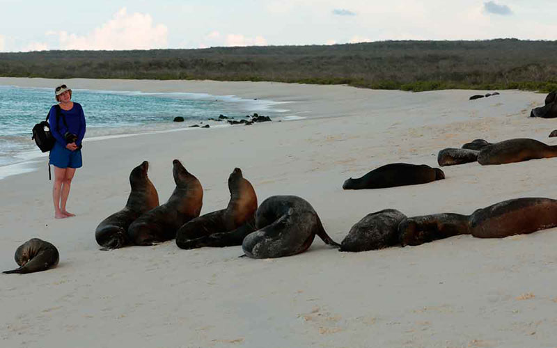 Galapagos Island Cruise with UnCruise Adventures